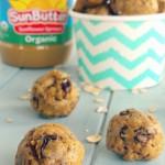 SunButter Oatmeal Raisin No Bake Bites - Nicole Dawson