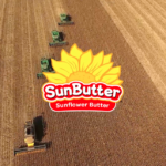 SunButterHealthBenefits